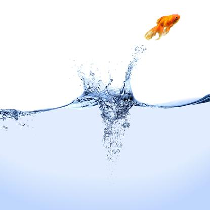 Liquid business environments are essential for company growth: VMware