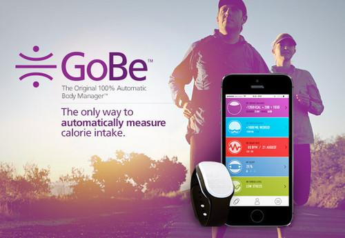 The Indiegogo campaign for the scientifically untenable Healbe activity tracker hasn't been shut down, but now a co-founder of the crowd-funding site seems to understand just how badly the wearable is affecting public trust in his platform.