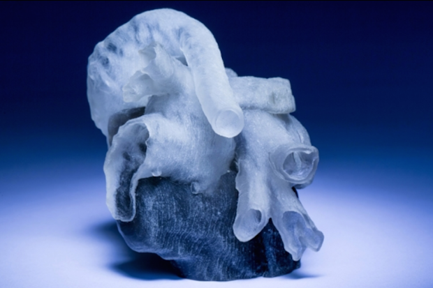 New system from MIT and Boston Children's Hospital researchers converts MRI scans into 3D-printed heart models in far less time than previous modeling required. Credit: Bryce Vickmark