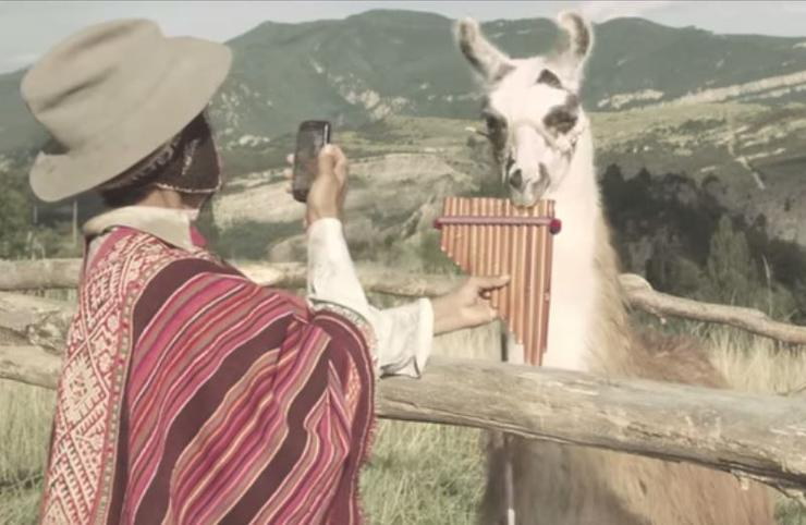 Schneider Electric's pan flute-playing lama