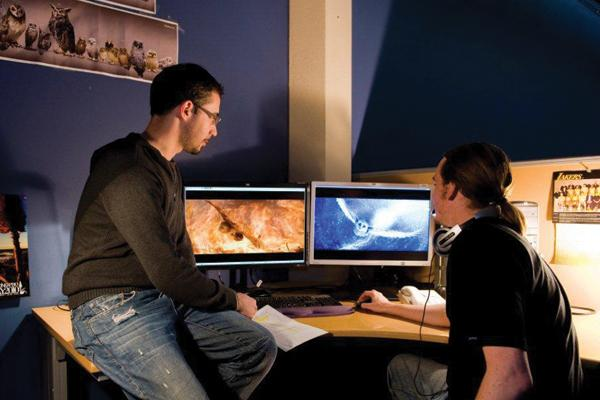 At work in the Animal Logic studios