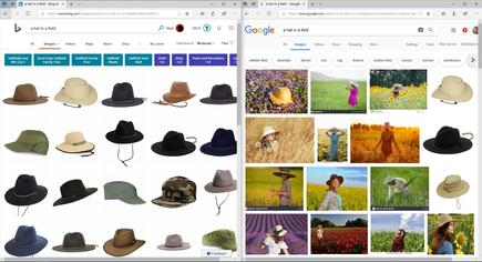I'm not sure what's going on here, but Bing's image search isn't demonstrating much intelligence
